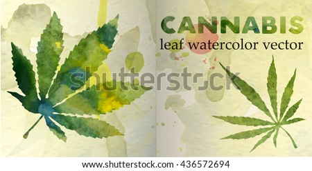 Marijuana leaf on the old watercolor paper. vector image - stock vector