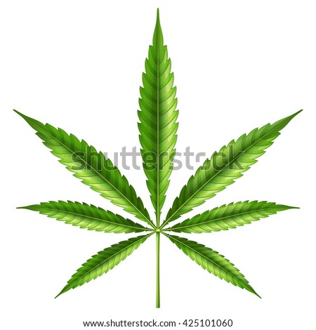 Marijuana leaf. Vector illustration.