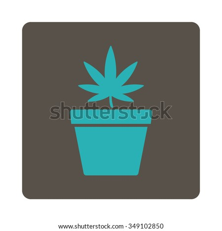 Marijuana Pot vector icon. Style is flat rounded square button, cyan and grey colors, white background. - stock vector