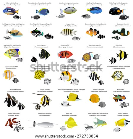 Dance stock vector 56330620 shutterstock for Gold fish names