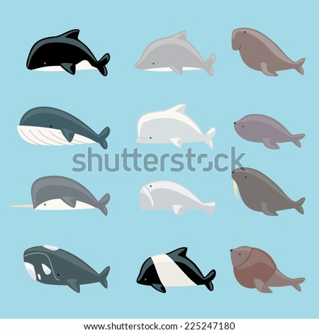 Marine mammals icon collection, with whale, dolphin, manatee, beluga, killer whale, narwhal, walrus, sea lion, blue whale vector illustration. - stock vector