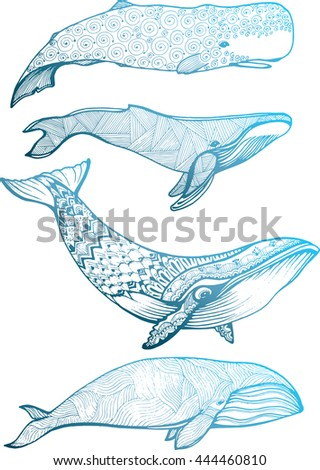Marine mammals. Set whales. Fish. Line art. Black and white drawing by hand. Decorative. Stylized. Tattoo.