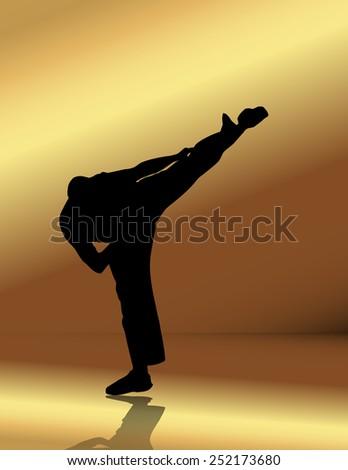 Martial arts. Vector illustration  - stock vector