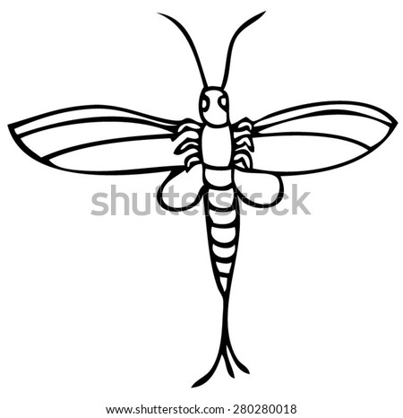 mayfly insect icon