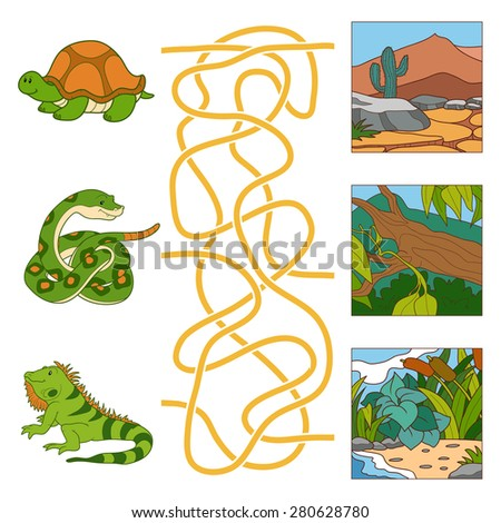 Maze game (turtle, snake, iguana and habitat) - stock vector