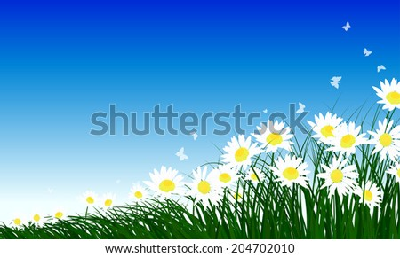 Meadow color background with butterflies and chamomiles. All objects are separated. Vector illustration with transparency. Eps 10. - stock vector