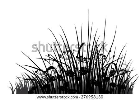 Meadow grass, herbs and flowers silhouette, vector illustration - stock vector