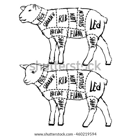 Pig Meat Diagram as well Pig Butcher Diagram besides Duck outline also Beef Cuts Template Menu Design Restaurant 413514595 furthermore Where Are The Steaks On A Cow Diagram. on swine meat cuts