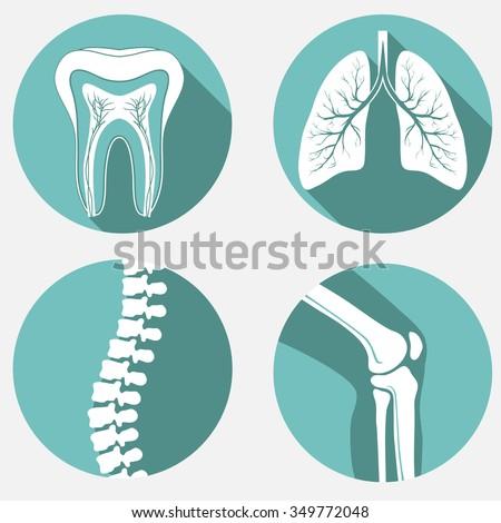 Medical labels set, diagnostic clinic badges, healthcare design elements. - stock vector