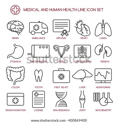 Medicine and human health line icons. Medical line symbols. Vector illustration - stock vector