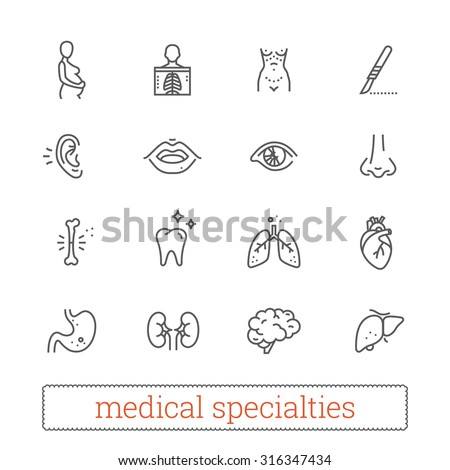 Medicine specialties thin line icons: diagnosis, medical, surgical. Human body systems, internal and sensory organs, surgical tools, diagnostic equipment. Design elements for web & mobile app. - stock vector