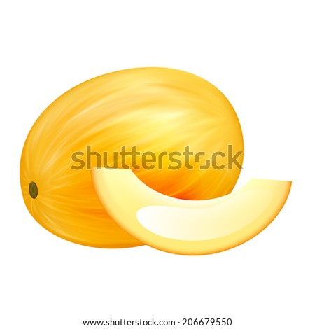 Melon - stock vector