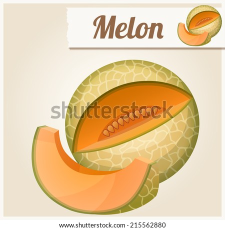 Melon. Detailed Vector Icon. Series of food and drink and ingredients for cooking. - stock vector