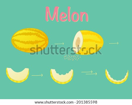 Melon. Whole, bitten and eaten. With seeds and yellowed. A template for food icons. Healthy snack. Natural raw food. Delicious fruit. Hand drawn. - stock vector
