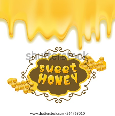 melting honey and frame with honeycombs. vector illustration - stock vector