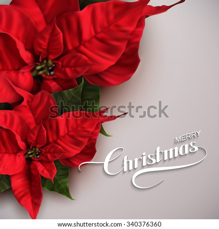 Merry Christmas. Vector Holiday Illustration With Lettering Label And Poinsettia Flowers - stock vector