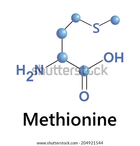 Methionine molecule structure, medical vector illustration. - stock vector