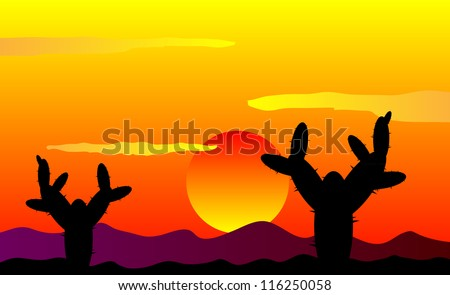 Mexico desert sunset with cactus plants - vector illustration - stock vector