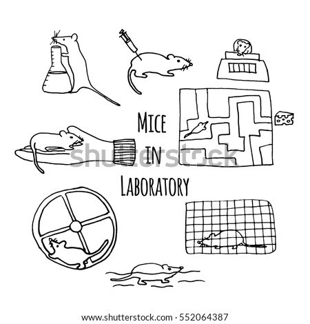 Lab Mouse Stock Images, Royalty-Free Images & Vectors | Shutterstock