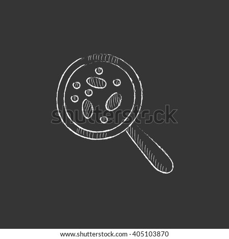 Microorganisms under magnifier. Drawn in chalk icon. - stock vector