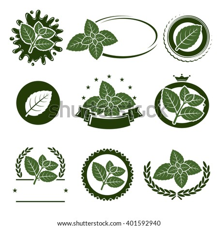 Mint leaves label set. Vector - stock vector