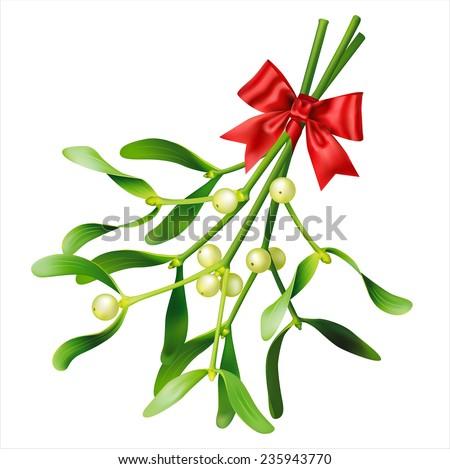 Mistletoe on white. Vector eps 10. - stock vector