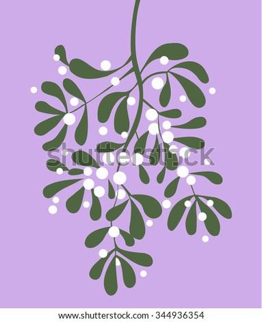 Mistletoe vector illustration - stock vector