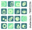 Mixed fruit icons collection - stock vector