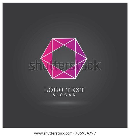 Modern Hexagon Logo Symbol Icon Vector Stock Vector 786954799