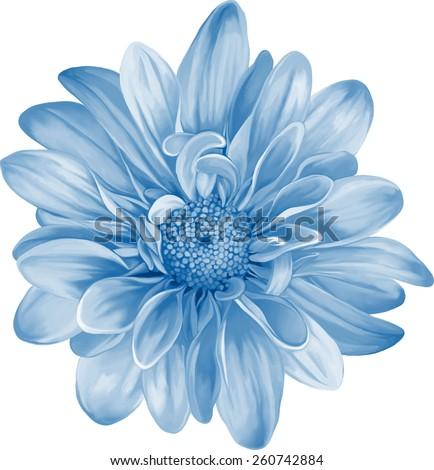 Mona Lisa flower, Blue flower, Spring flower.Isolated on white background. - stock vector