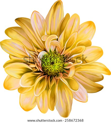 Mona Lisa flower, Pink flower, Spring flower.Isolated on white background. - stock vector