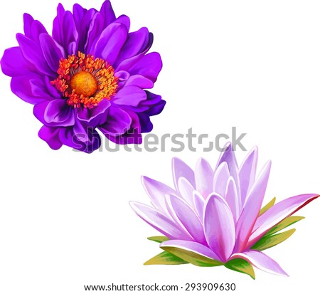 Mona Lisa flower, Pink flower, Spring flower.Lotus flower, water lily flower Isolated on white background. - stock vector