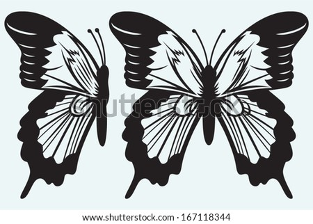 Monarch Butterfly with open wings isolated on blue background - stock vector