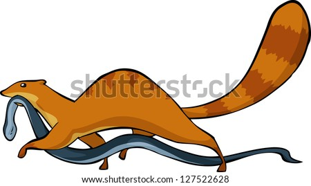 Mongoose with a snake in his mouth vector illustration - stock vector