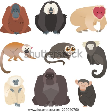 monkey and primate collection - stock vector
