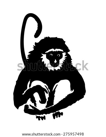 Monkey. Hand drawn silhouette of animal on white background - stock vector