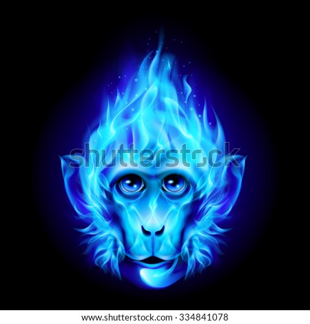 Monkey head in blue fire isolated on black - stock vector