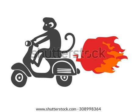 Monkey on the scooter. Vector illustration isolated on the white background. - stock vector