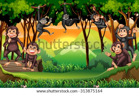 Monkeys climbing tree in the jungle illustration - stock vector