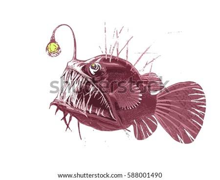 Monkfish Stock Images,...