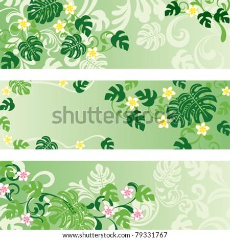 Monstera banners set. Illustration vector. - stock vector