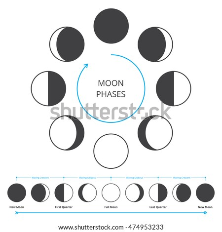 Moon Phases Stock Images, Royalty-Free Images & Vectors | Shutterstock