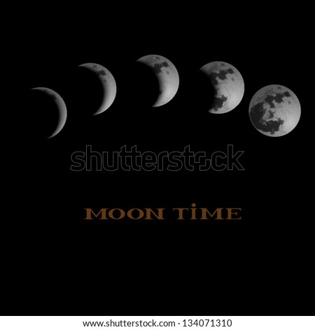 Moon Phases. Vector illustration - stock vector