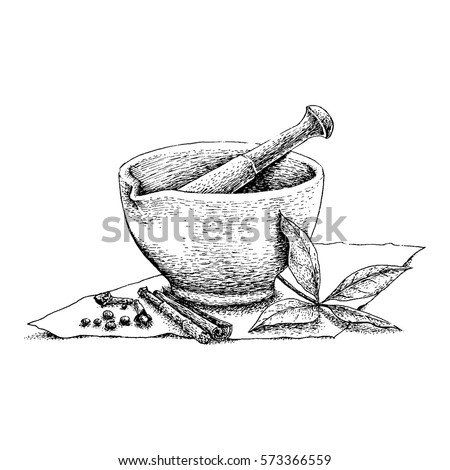 Mortar Pestle Vintage Line Drawing Stock Vector 573366559 - Shutterstock