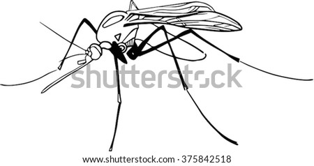 Mosquito fly insect black outline vector illustration