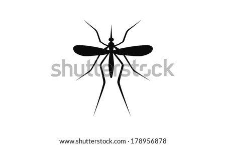 mosquito isolated on white background - stock vector