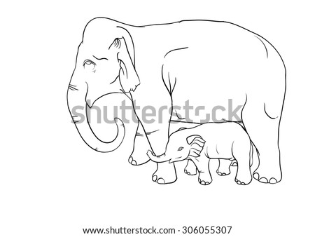 mother and baby elephant vector  (coloring)