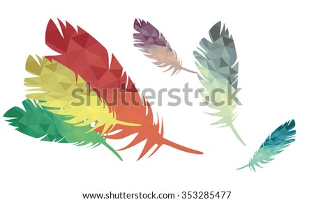 motley feathers of birds