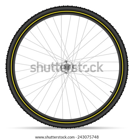 Mountain bike wheel on a white background.