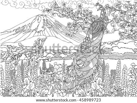 mountain in japan fujiyama landscape coloring pages beautiful peacock on the background a